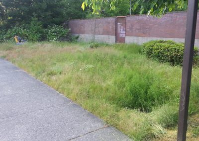 Federal Way 02 before