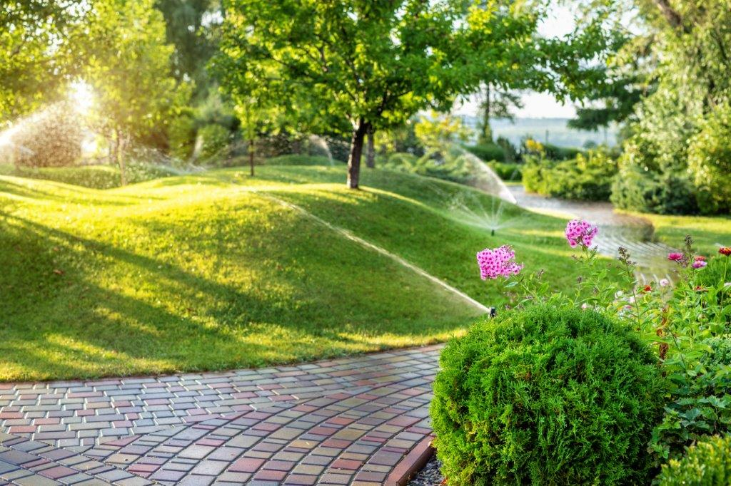improve your lawn care