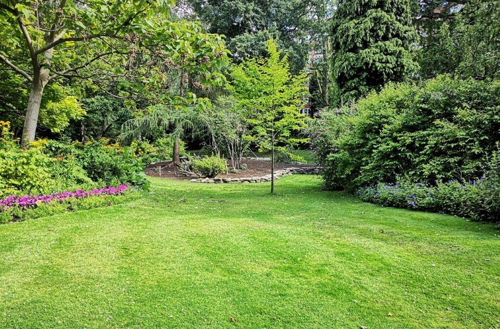 7 Landscaping Tips and Tricks That Will Beautify Your Property